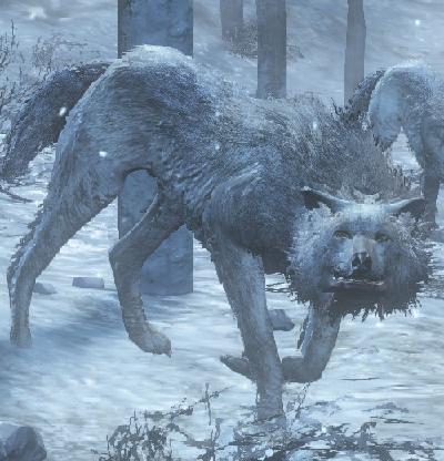 wolf dark souls 3 wiki