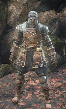 Hard Leather Armor Set & Armor | Dark Souls 3 Wiki