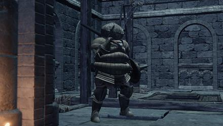 Siegward of Catarina